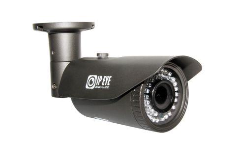 BL2-SUNPR-4-01 IP камера IPeye